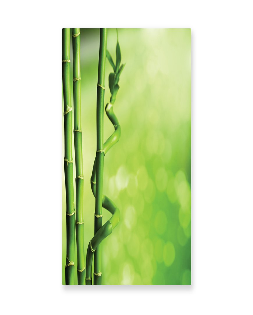 Lunarable Green Wall Art, Bamboo Stems Nature Ecology Sunbeams Soft Spring Scenic Spa Health Relaxation, Gloss Aluminium Modern Metal Artwork for Wall Decor, 11.6 W X 23.5 L Inches, Green Pale Green
