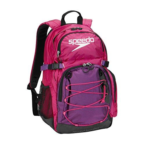Speedo Record Breaker Backpack, Fuchsia/Purple Amarath, 25-Liter