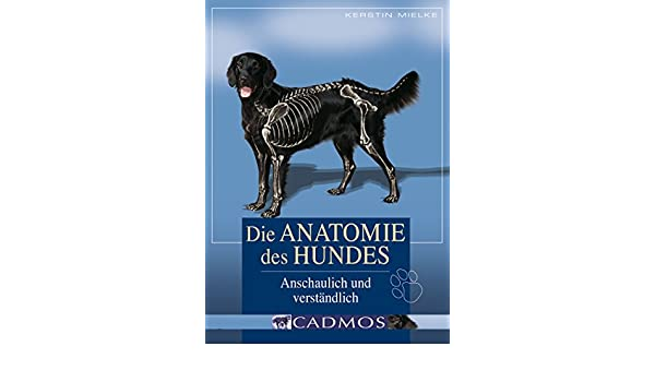 Die Anatomie des Hundes: Anschaulich und verständlich (Hundwissen ...