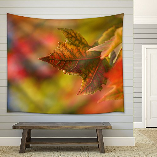 Closeup of Maple Leaf During Fall Time Fabric Wall Tapestry