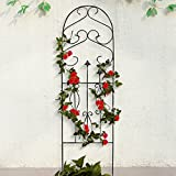 "Amagabeli Garden Trellis for Climbing Plants 60"" x 18"" Rustproof Black Iron Potted Vines Vegetables Vining Flowers Patio Metal Wire Lattices Grid Panels for Ivy Roses Cucumbers Clematis Pots Supports"