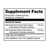 Seagate Products Grape Seed Extract 250 mg 90