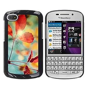 "For BlackBerry Q10 , S-type Planta Naturaleza Forrest Flor 1"" - Arte & diseño plástico duro Fundas Cover Cubre Hard Case Cover"