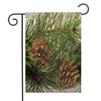 GDjiuzhang Christmas Home Garden Flags,Double Sided Outdoor Decorative Yard Flags(Christmas Brown Regular Gold Pine Cones Tree On Branch Nature Fir Seed White)