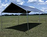 Lost Woods 10' x 20' Car Port Canopy Kit (12' x 20' Silver Tarp) FULL KITNEW .sell#(jd-wholesale~hee193252474055264