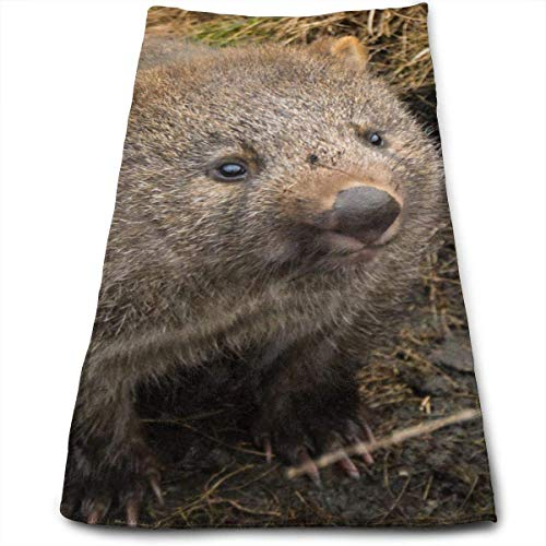 Cradle Mountain Land of Wombats Soft Cotton Large Hand Towel- Multipurpose Bathroom Towels for Hand, Face, Gym and Spa 11.8 X 27.56 Ins