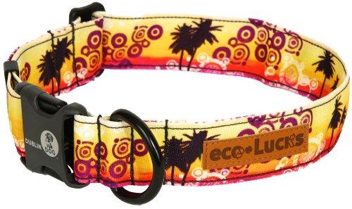 Dublin Dog Co Eco Lucks Hampton Dog Collar, Paradiso, 12 by 20-Inch, Medium