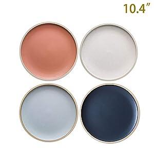 10.4-Inch Porcelain Dinner Plates Set Pizza Pasta Serving Plates Matte Glaze Dessert Dishes Set of 4