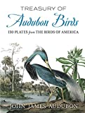 Treasury of Audubon Birds: 130 Plates from The