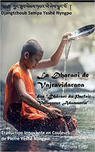 La Dharani De Vajravidarana Dite Dhran Du Parfait Vainqueur Adamantin Dharma French Edition Paperback March 1 2017
