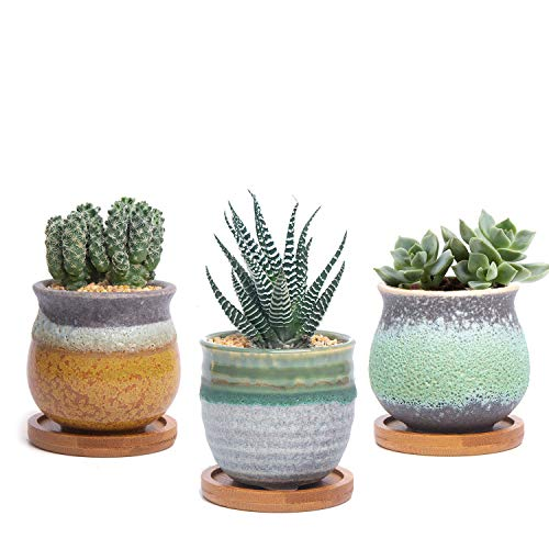 T4U Ceramic Succulent Cactus Planter Plant Pot with Bamboo Tray Pack of 3 - Summer Trio Green, Small Home and Office Desktop Windowsill Bonsai Decoration Gift for Wedding Birthday Christmas