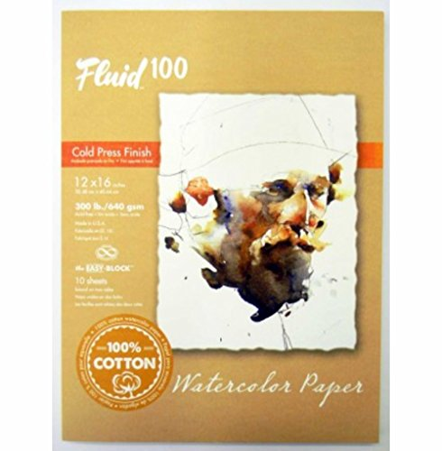 (Handbook Paper Fluid 100 Watercolor Cp 300Lb Ez-Block White 12X16)
