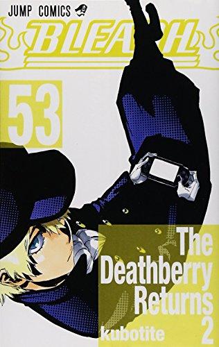 BLEACH Vol. 53 (in Japanese)