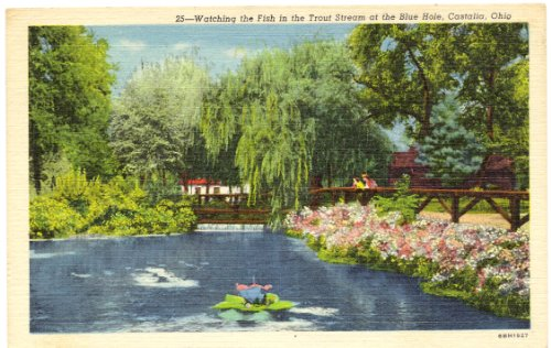 1950s Vintage Postcard - Watching the Fish in the Trout Stream at the Blue Hole - Castalia Ohio
