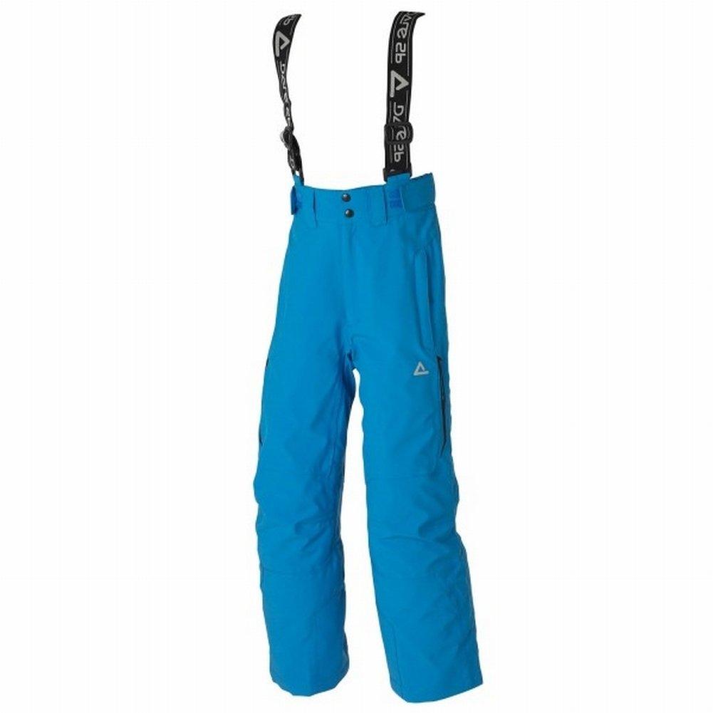 dare2b Upstage Ski Hose Skihose Herren pluto blue