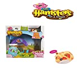 Zuru Hamsters in a House Small Playset - SUNNY - Collectable Toy For Young Girls
