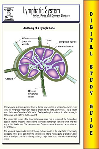 Lymphatic System ( Blokehead Easy Study Guide)