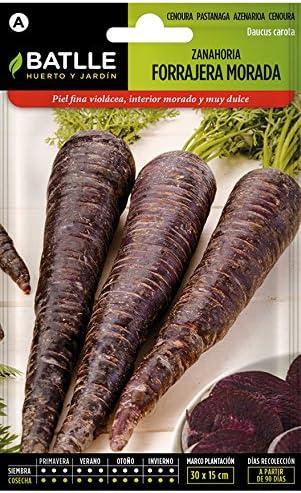 Semillas Horticolas Zanahoria Morada Forrajera Batlle Amazon Es Jardin Las zanahorias moradas no son fáciles de encontrar. semillas horticolas zanahoria morada forrajera batlle
