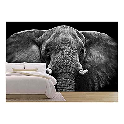 With Expert Quality, Beautiful Style, Elephant