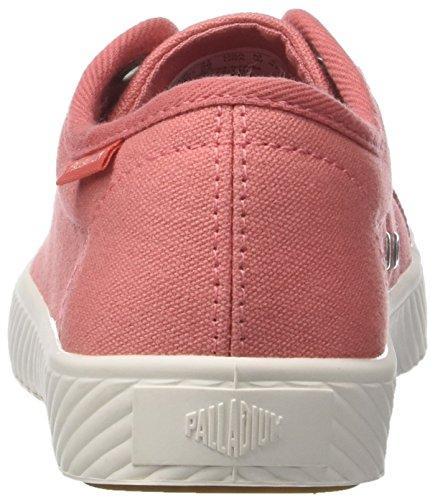 Damen De Palladium Pallaphoenix Rose Sneaker En Toile Og (k77 De Corail Aux Épices)