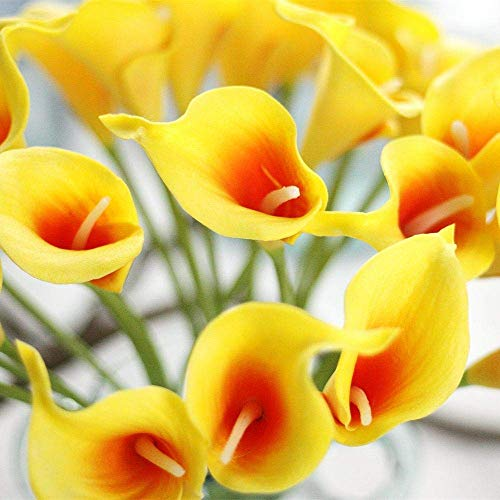 M&A Decor Calla Lily Artificial Flowers 20 PCS Real Touch Latex Flowers Bulk for DIY Bridal Bouquet Home Kitchen Decorations, Yellow