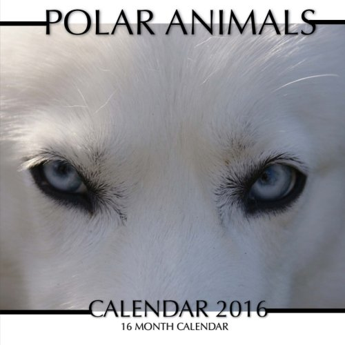 Polar Animals Calendar 2016: 16 Month Calendar