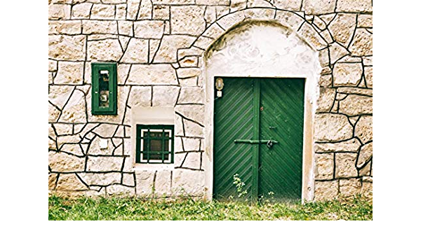 10x7ft Green Vine Covered House Backdrops Front Door Spring Scenic Vinyl Photography Background Rustic House Old Stone Steps Pink Flowers Glass Door Personal Portraits Wedding Photo Shoot