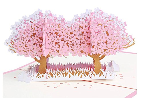 Blossom Card (Popseen Cherry Blossom Pop Up Card for All Occasions - For Birthday, Graduation, Anniversary, Get Well, Sympathy - Cherry Blossom Pop Up Card)