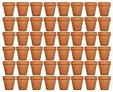 Set of 48 Terra Cotta 2.5'' x 2.5'' Lawn & Garden Mini Flower Pots! 2.5 inch x 2.5 inch Terra Cotta by Black Duck Brand (48)