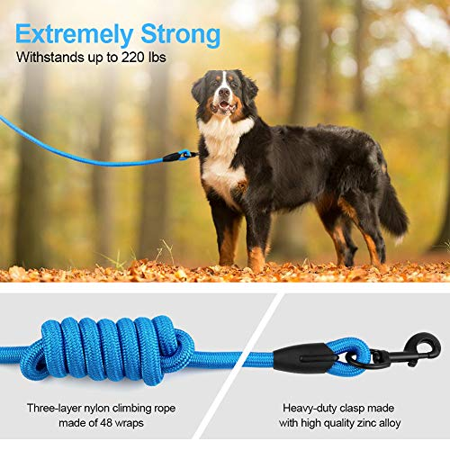 5FT Strong Dog Leash with Heavy Duty Padded Comfortable Handle Built-in Dog Waste Dispenser and Bags for Walking Training Hiking Outdoors (5FT, Black)