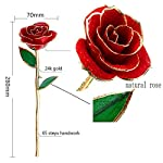 24k-Gold-RoseArtificial-Flowers-Red-Rose-flowers-Artificial-for-Decorationand-Long-Stem-with-Transparent-StandGolden-Rose-for-Girlfriend-Gifts-Wedding-Flowers-Mother-Birthday-Gifts-and-More
