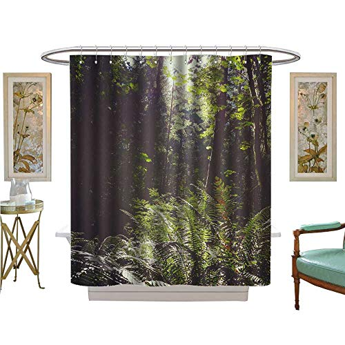 luvoluxhome Shower Curtains with Shower Hooks BC Vancouver Island Canada Scenic Lush Green Rainforest Landscape Satin Fabric Sets Bathroom W72 x L96]()