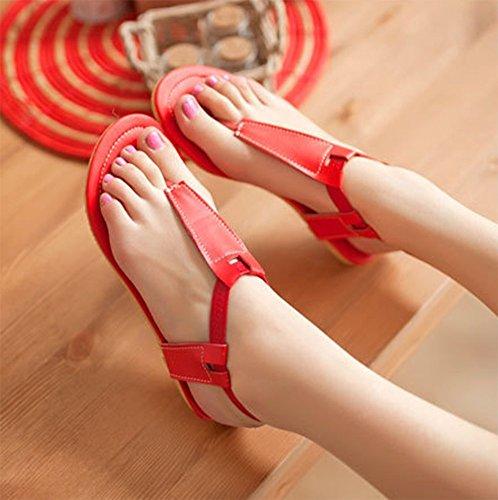 Sandali Infradito Da Donna Grandi Dimensioni Cinturino Alla Caviglia Infradito Da Donna Chfso