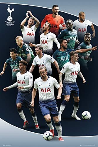 (Tottenham Hotspur - Premier League Soccer Poster (The Players - Season 2018/2019) (Size: 24
