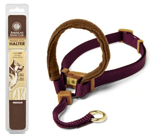 Petmate 1-Inch by 18-32-Inch Large AKC Padded Dog Halter, Burgundy