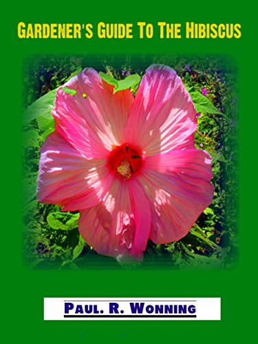 Gardeners Guide To The Hibiscus Perennial Hibiscus Flower Care