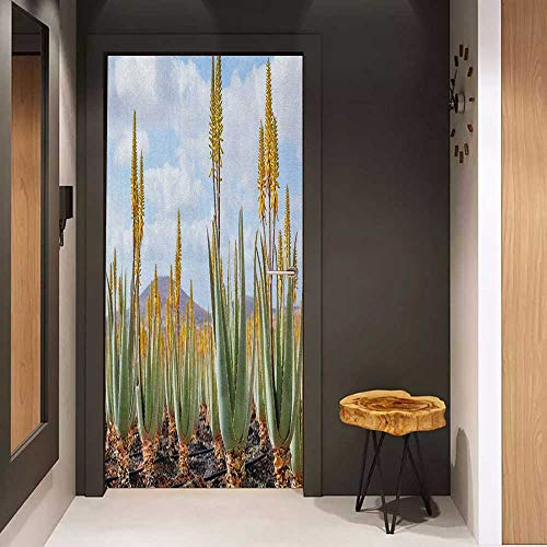 Onefzc Wood Door Sticker Plant Photo from Aloe Vera Plantation Medicinal Leaves Remedy Fuerteventura Canary Islands Easy-to-Clean, Durable W23 x H70 Multicolor ()