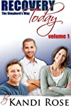 img - for Recovery Today: The Shepherds Way (Volume) (Volume 1) book / textbook / text book