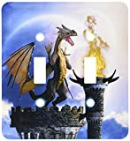 3dRose lsp_172925_2 A Dragon Guard A Castle In The Night A Torch Fire Light Up The Castle Toggle Switch