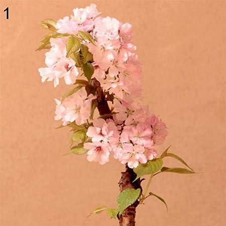 grape pear apple /& petite rose fruit on tan wallpaper S.A Maxwell 7016-824