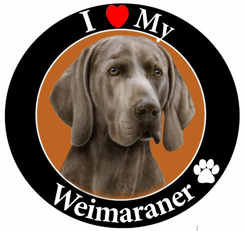 (E&S Pets Car Magnet, Weimaraner)