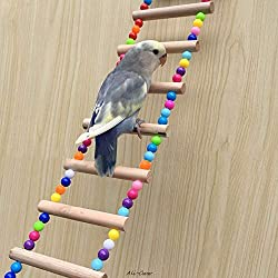 AE Pacific Colorful Natural Rope Ladder Bird Toy Climbing Toy Multi-Steps for Bird Like Parrot, Parakeet, Gray Parrot,Little Amazon Parrot, Mini-con Parrot