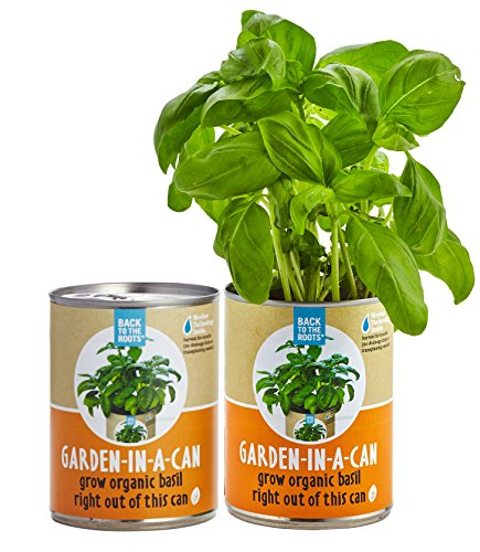 Blended Mushroom Sauce (Back to the Roots Garden-in-a-Can, Grow Organic Basil, 2)