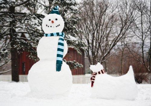 Snow Note - 8