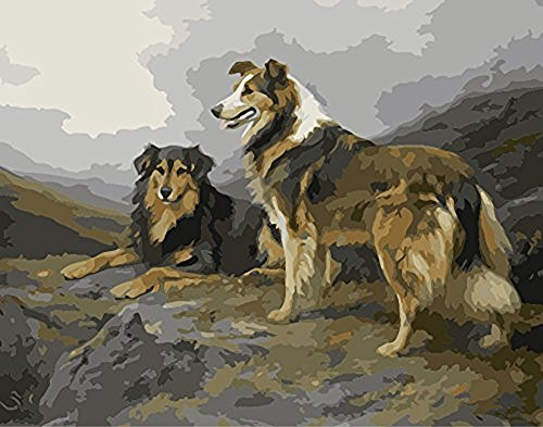 JynXos Unframed Paint By Number Dog Linen Canvas DIY Painting - Border Collie ()