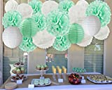Big Size Mint To Be Wedding Decorations White Mint Tissue Paper Pom Poms Flowers Paper Lanterns Tissue Paper Honeycomb Balls Party Wedding Engagement Bridal Shower Hanging Decorations