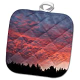 3dRose Danita Delimont - Sunsets - Wisconsin. Sunset with alto cumulus clouds and silhouetted treeline. - 8x8 Potholder (phl_279801_1)
