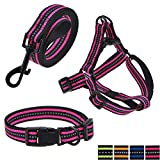 "Mile High Life Night Reflective Double Adjustable Band Nylon Small Puppy Pet Dog Combo Collar Leash and Harness Set (Pink, Small Neck 11""-15"" -20 lb)"