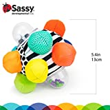 Sassy Developmental Bumpy Ball | Easy to Grasp
