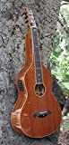 Imperial Royal Hawaiian Ali'ki Special All Solid Weissenborn Lap Steel w/Pickup & Case